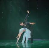 Magisch van liefde-flamingo de dans-de werelddans van Oostenrijk Royalty-vrije Stock Fotografie