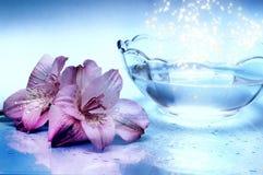 Magisch water royalty-vrije stock foto's