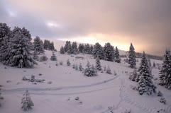 Magische Ansicht des Winter-Parks herein Lizenzfreies Stockfoto