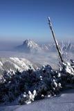 Magische bergen Stock Foto
