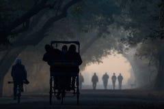 Magische Bharatpur-Landschaft Lizenzfreie Stockfotos