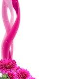 Magische bloemen Stock Fotografie
