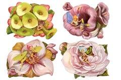 Magische Blumenfee Lizenzfreies Stockfoto