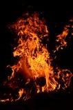 Magische brand Stock Afbeeldingen