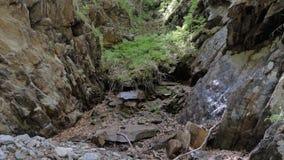Magische canion dichtbij een bergrivier stock video
