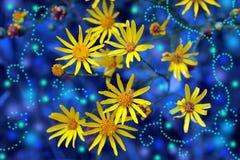 Magische gele bloemen Royalty-vrije Stock Foto's