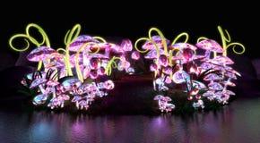 Magische glühende Pilze Stockfoto