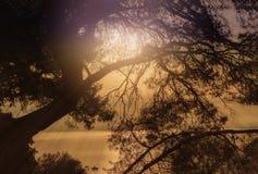 Magische gouden avonden met overzeese mening stock afbeelding