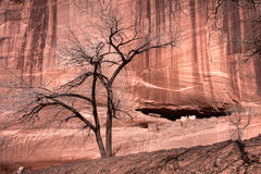Magische historische canion in het land van Navajo Stock Afbeeldingen