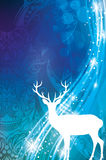 Magische Kerstmis Royalty-vrije Stock Afbeelding