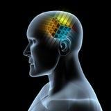 Magische kubus in hersenen Stock Foto