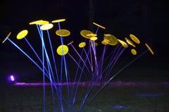 Magische lichten in Gruga-Park, Duitsland Stock Foto's