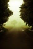 Magische mist op een weg stock afbeelding