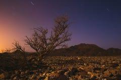 Magische Nacht in Israel Negev-Wüste Sternglänzen lizenzfreie stockfotos