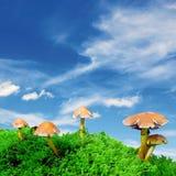 Magische paddestoel blauwe hemel stock fotografie