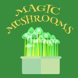 Magische Pilze wachsen Ausrüstung vektor abbildung