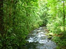 Magische rivier in Guapiles, Limà ³ n, Costa Rica Stock Foto