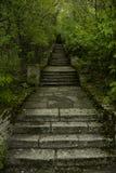Magische Schritte Stockbild