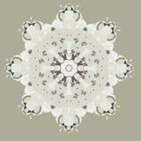 Magische sneeuwvlok Stock Afbeelding