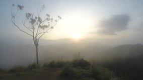 Magische Sonne, die bei Ella Peak, Sri Lanka steigt stock video