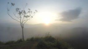 Magische Sonne, die bei Ella Peak, Sri Lanka steigt stock video footage