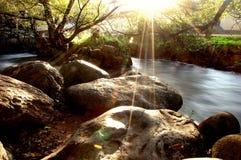 Magische Sonneleuchte lizenzfreies stockfoto