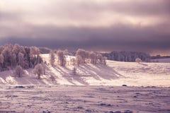 Magische Szene des Winters auf einem Berg in Rumänien Stockfotos