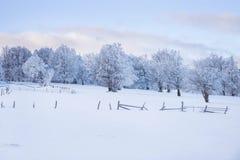 Magische Szene des Winters auf einem Berg in Rumänien Lizenzfreie Stockfotos