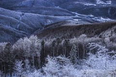 Magische Szene des Winters auf Semenic-Berg Rumänien Stockbilder