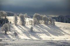 Magische Szene des Winters auf Semenic-Berg Rumänien Lizenzfreies Stockbild