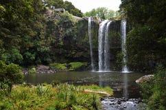 Magische Wasserfalllandschaft in der vibrierenden Natur nahe Whangarei lizenzfreies stockfoto