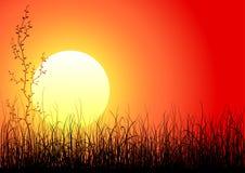 Magische zonsondergang royalty-vrije illustratie
