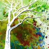 Magischer Baum 9 Stockfoto