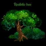 Magischer Baum lokalisiert auf schwarzem Hintergrund lizenzfreie stockbilder