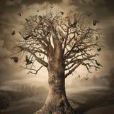 Magischer Baum mit Krähen Stockfotos