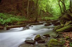Magischer Fluss Lizenzfreie Stockfotografie