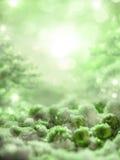 Magischer grüner Hintergrund mit Schnee und Eis stellt dar Stockfotos