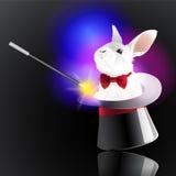Magischer Hut mit Kaninchen Lizenzfreie Stockfotos