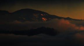 Magischer Mammutbaum-Sonnenuntergang in den hohen Sierra von Kalifornien stockbild