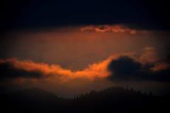 Magischer Mammutbaum-Sonnenuntergang in den hohen Sierra von Kalifornien lizenzfreies stockfoto