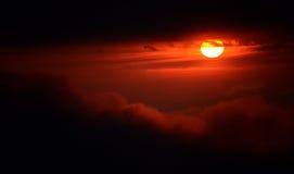 Magischer Mammutbaum-Sonnenuntergang in den hohen Sierra von Kalifornien stockbilder