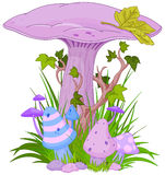 Magischer Pilz Stockfotos