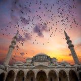 Magischer Sonnenaufgang über blauer Moschee, schöner Himmel mit Vögeln Stockbild