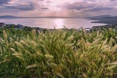 Magischer Sonnenuntergang auf adriatischer Küste in Kroatien Stockfotos
