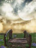 Magischer Sonnenuntergang und Vogel auf Himmel in der Sonne beleuchten Stockbild