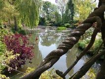 Magischer Teich Stockbild