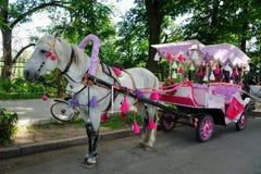 Magischer Wagen für Prinzessin in Suzdal Stockbilder