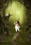 Magischer Wald Stockfotografie