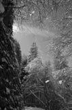 Magischer Winter Stockfoto