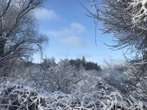 Magischer Winter in ZP lizenzfreie stockfotografie